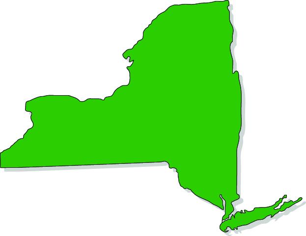 NY LLP