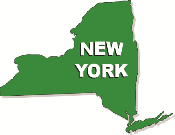 NY Education Department Consent resized 600