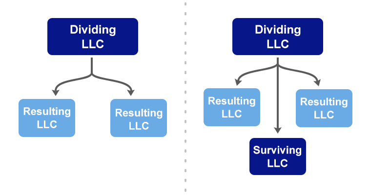 LLC Division Options
