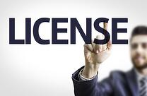 Business License Services