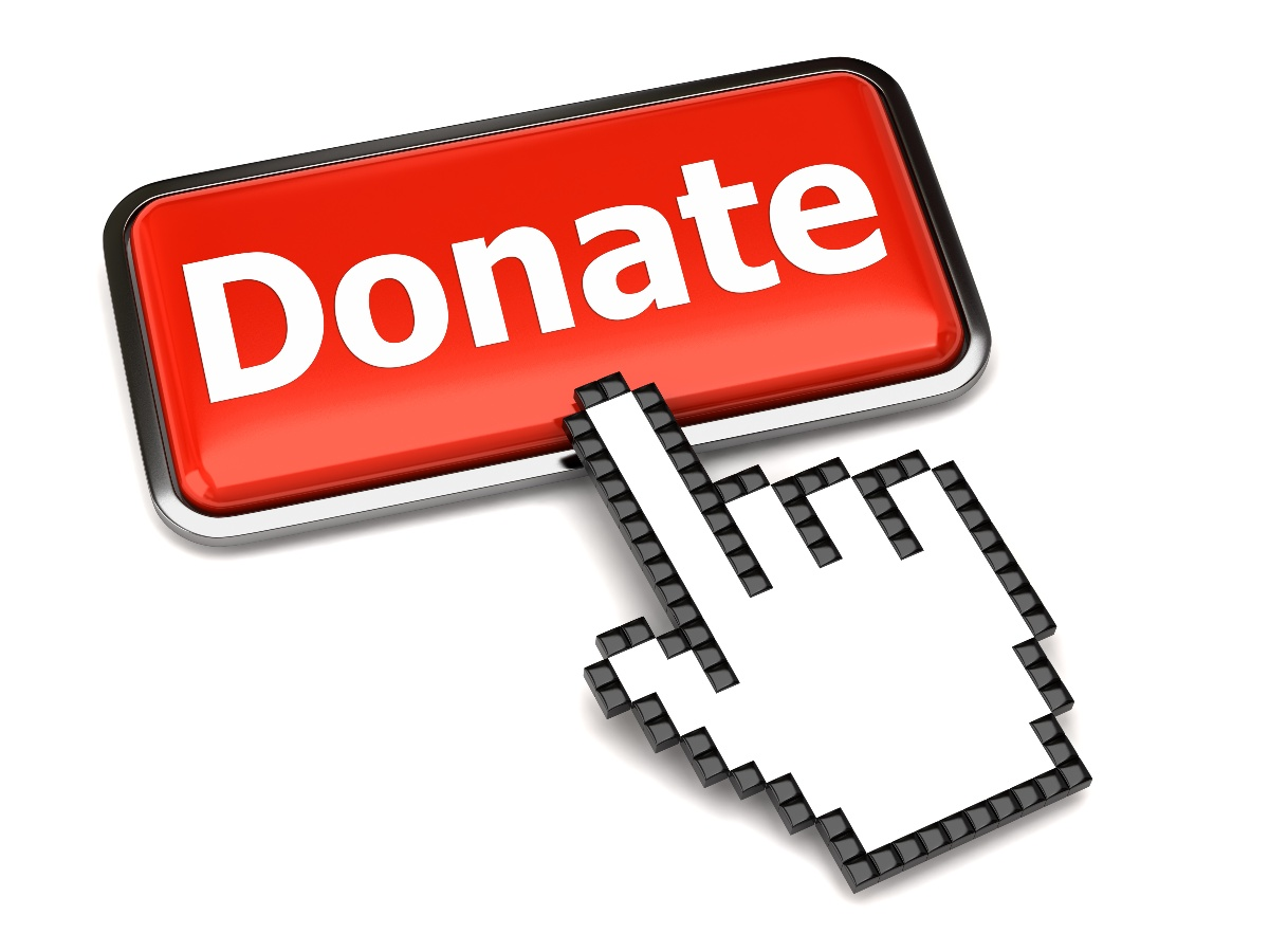 Soliciting Donations Online