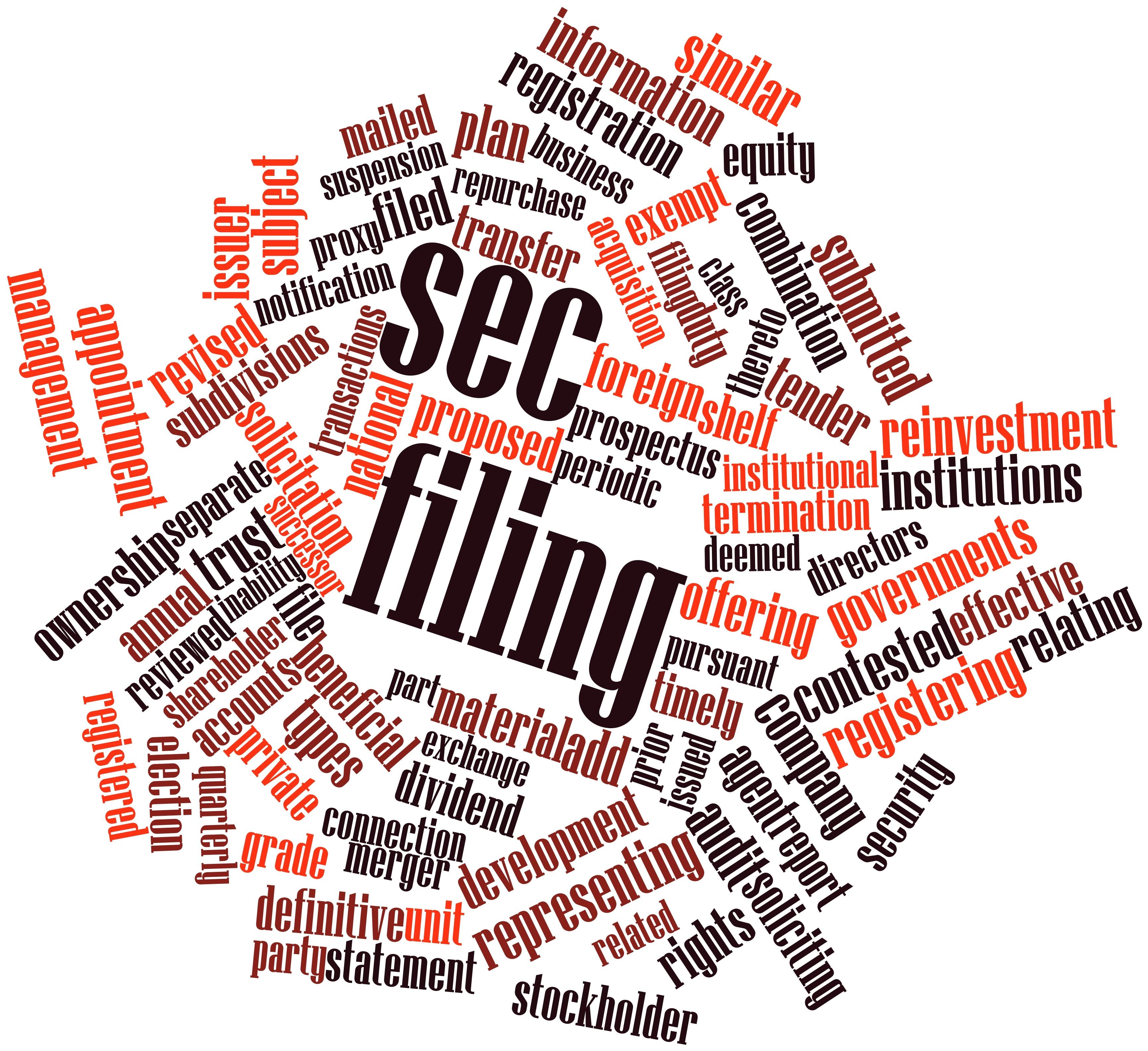 SEC Registration Statements Requiring a U.S. Duly Authorized Representative